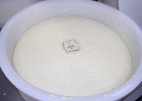 Aanbrengen boerenkaasmerk
